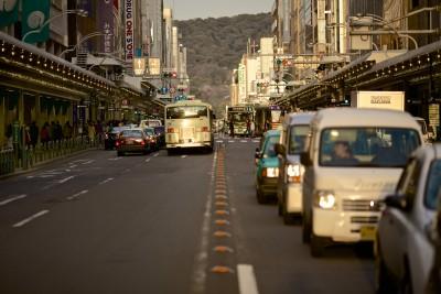 Japan and Korea: Lessons for Economic Development
